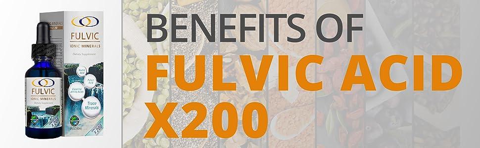 Benefits of Fulvic Acid X200