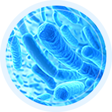 Approved Science Colonax Constilex IBS Relief Constipation Colon Cleanse Irritab Prostarex Hemovir