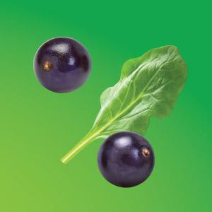 Ingredients like elderberries and spinach