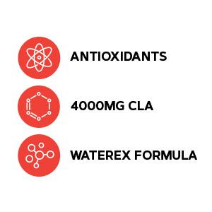 Includes antioxidants, 4000mg CLA and Waterex formula