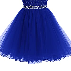 85d7c59c9bc2 Amazon.com: Tideclothes ALAGIRLS Short Beaded Prom Dress Tulle ...