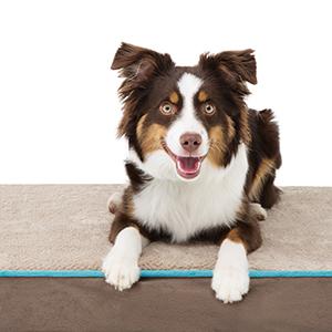 Waterproof Orthopedic Pet Bed