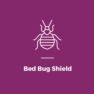 Bed Bug Shield