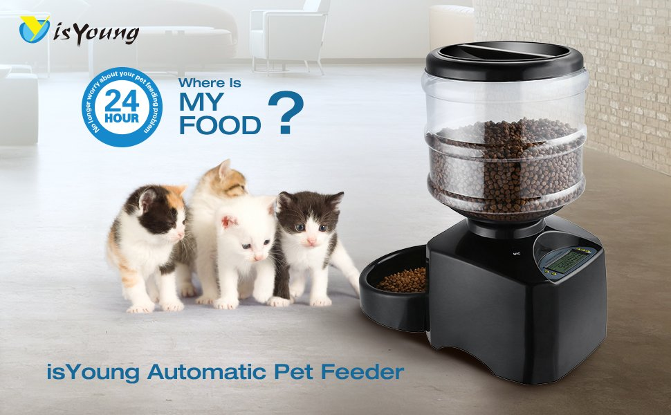 lowres pet oas cat automatic feed benefits autopet its decision our an feeder of having