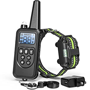 shock collar for dogs with remote