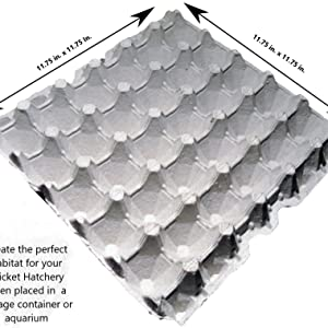 8 - Egg Flats, Used for Housing Your Crickets and Roaches