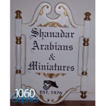 1060 graphics lettering decal car truck door window boat letter number sticker sign auto custom text