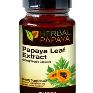 Papaya Leaf Extract - SuperFruit Natural Blood Platelet Boost, Bone Marrow  Support, Immune Gut