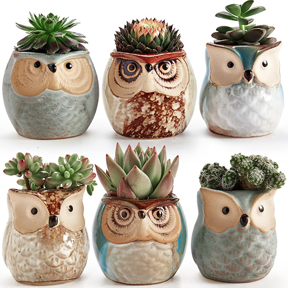 Amazon Com Sun E 2 5 Inch Owl Pot Ceramic Flowing Glaze
