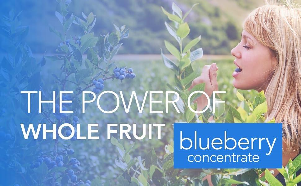 Whole Fruit Blueberry