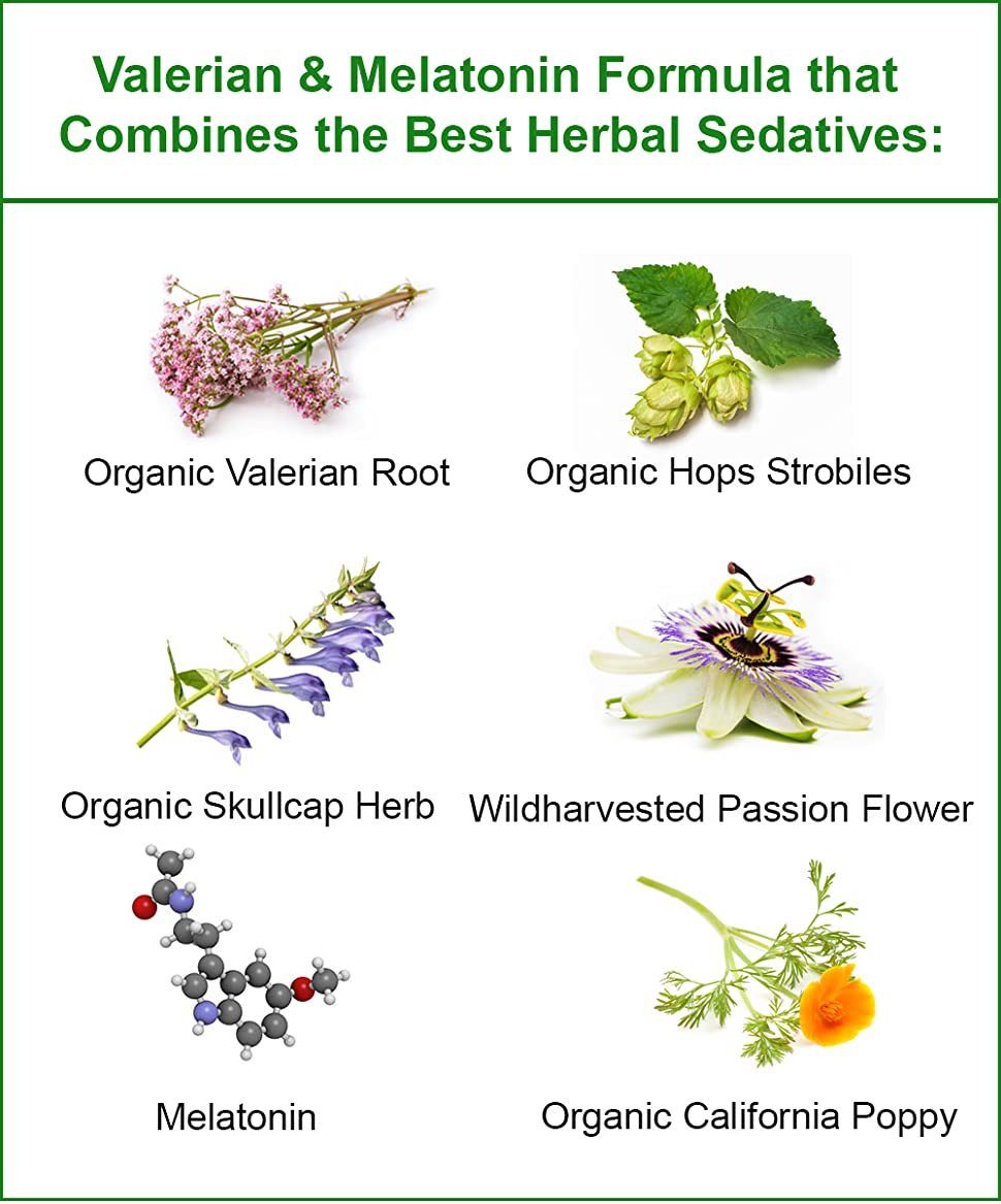 The best sedative: reviews. Herbal sedatives rating 14