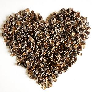 ComfyComfy buckwheat hulls