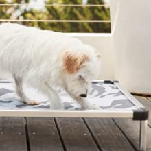 chew proof dog bed design