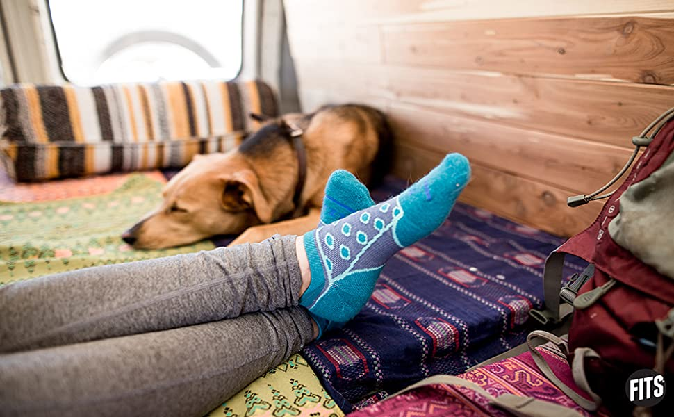 fits socks and doggo