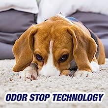 Amazon Com Resolve Pet Stain Amp Odor Carpet Cleaner 22 Oz
