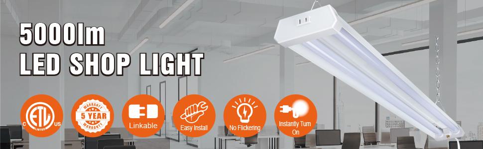 shoplight