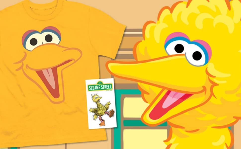 Youth Sesame Street Big Bird Face T Shirt for Boys