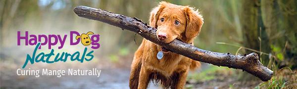 Happy Dog Naturals, mange free dog, happy dog, mange treatment