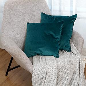 Velvet Toss Pillow Case