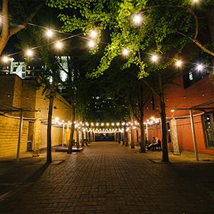 luces de cadena al aire libre