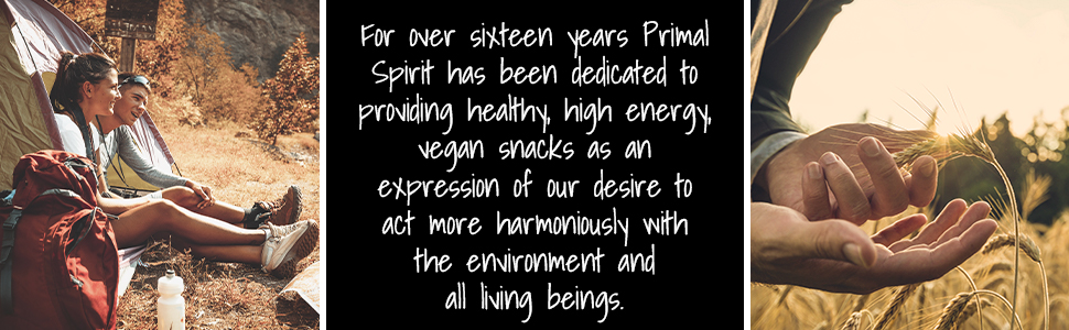 Primal Spirit Vegan Jerky Plant Based Protein Certified Non-GMO No Preservatives Vegan Snacks