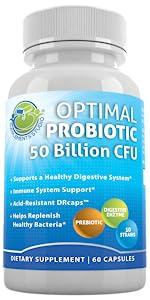 probiotic 10 strains 50 billion digestive enzymes prebiotic boost immune system support bloating