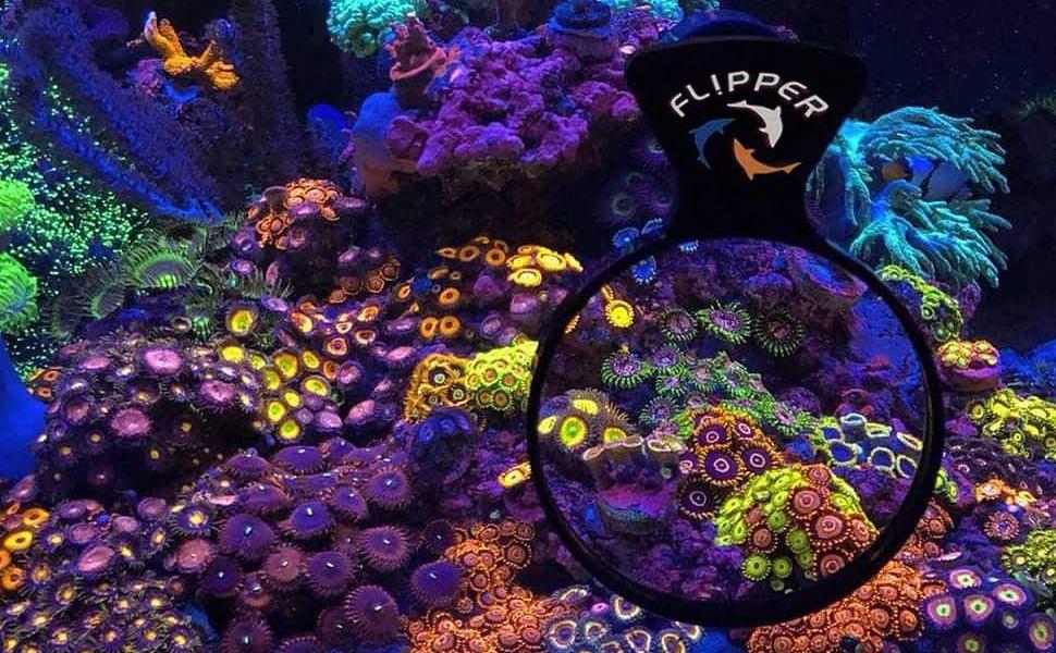 Flipper cleaner FL!PPER Aquarium products deepsee magnify lens larger decoration tank aquarium tanks