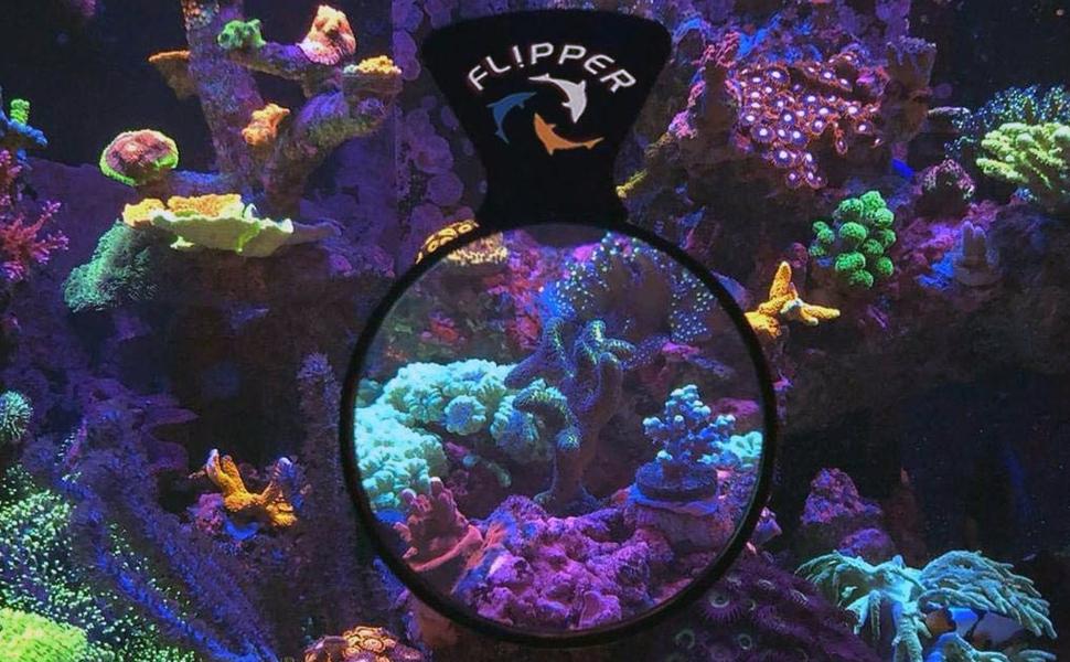 flipper cleaner fl!pper tank deepsee magnifying lens tank aquarium viewer decor decoration tanks