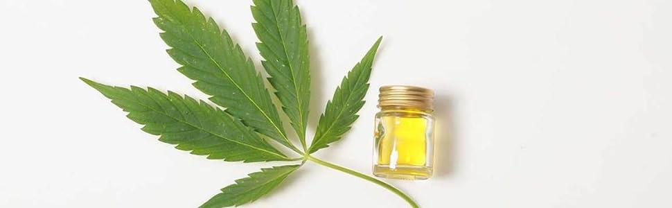 hemp seed oil for hair, hemp seed oil for skin, hemp seed carrier oil, pure hemp seed oil, hemp oil