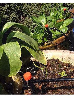 Amazon Com Flantor Garden Irrigation System 1 4 Quot Blank