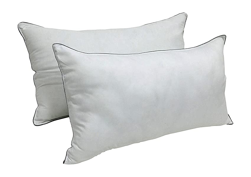 Amazon Com Set Of 2 Dream Deluxe Ultimate Bed Pillows
