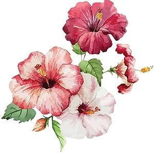 hibiscus, natural ingredients, organic ingredients