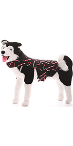 dog doggy clothes clothing jacket pup puppy puppies shirt outfit dog owner matching