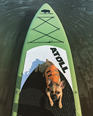 dogs on paddle boards isuip boards warrenty blow up