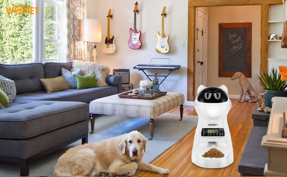 best automatic pet feeder