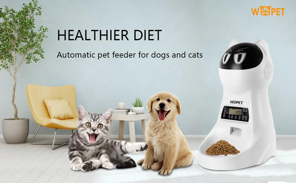 pet feeder timer