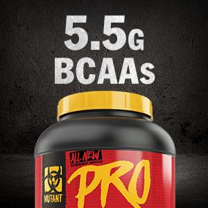 protein powder workout performance supplement