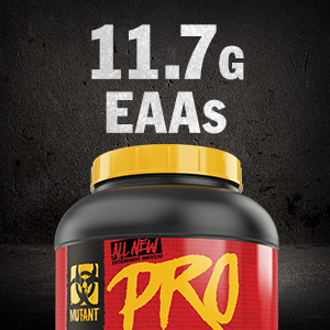 protein powder, maximize performance, workout supplement