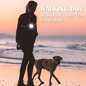 walk dog at night