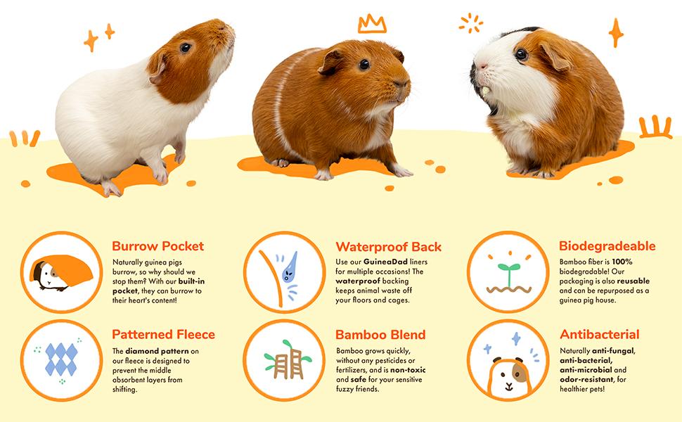 Amazon Com Guineadad Fleece Liner 2 0 Guinea Pig