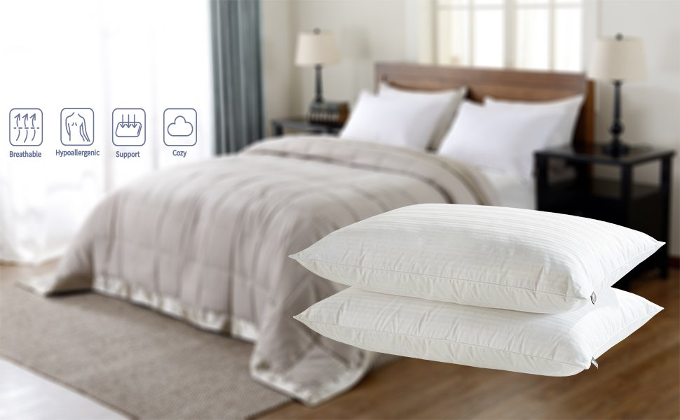 Amazon Com Downluxe Goose Feather Down Pillow Set Of 2