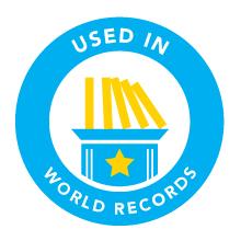 Bulk Dominoes Leaderboards World Records