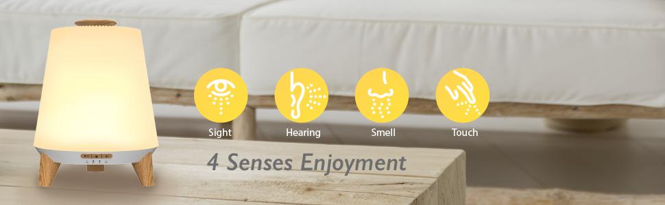 4 senses enjoyment