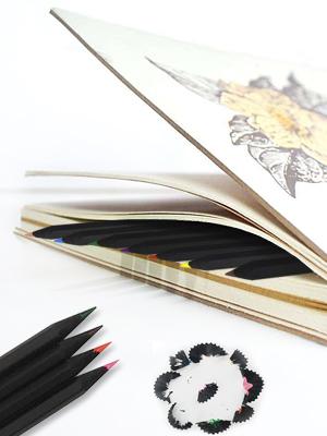 Amazon.com: Lápices de colores, 12 unidades, color negro ...