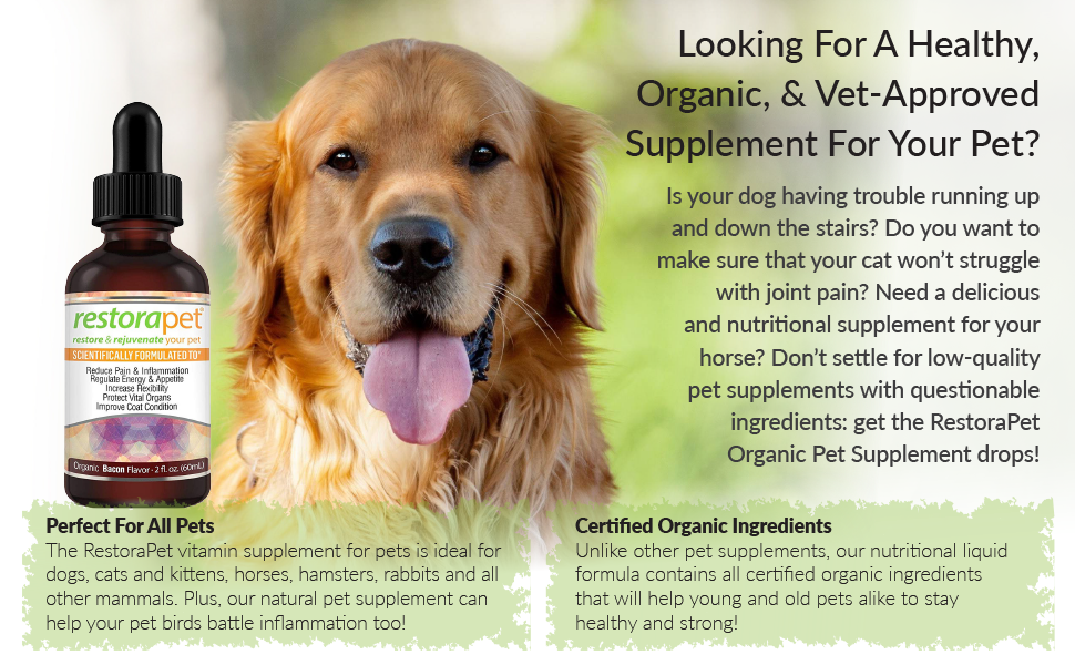 supplement for your pet