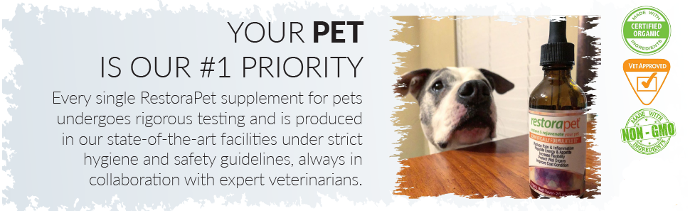 your pet is our priority