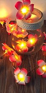 Frangipani LED String Light Hawaiian Foam Artificial Plumeria Flower