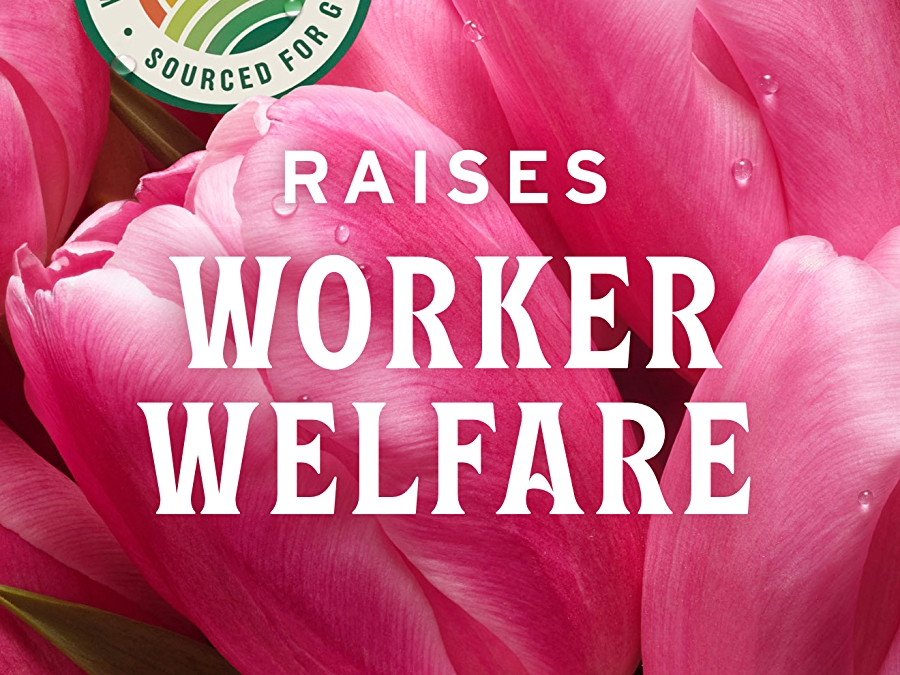 pink tulips with sourced for good seal and white text that reads raises worker welfare