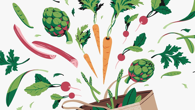 illustration of spring vegetables in bag