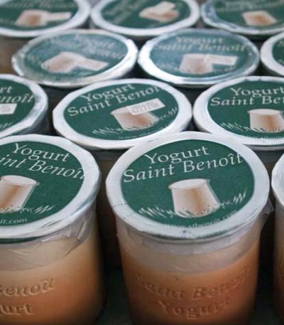 Saint Benoit yogurt